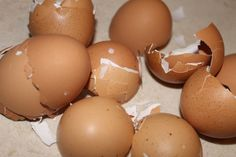 Natural Calcium Supplement from eggshells & lemon juice