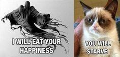 harri potter, starv, laugh, stuff, grumpi cat, funni, humor, dementor, grumpy cats