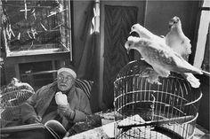 Matisse. ©Henri Cartier-Bresson / Magnum Photos. Foto tomada de http://www.rom1.fr/chris_blog/wp-content/uploads/2011/09/henry-cartier-bresson-henri-matisse.jpg