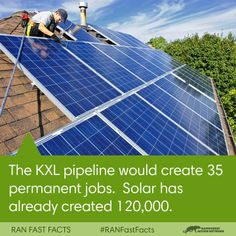 We shall harness the sun's power and then EVERYONE WILL HAVE A JOB! You get a job and you get a job and — OK, we'll stop. We're just excited. Anyway, shoutout to Rainforest Action Network for the photo!