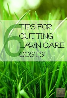 6 Tips For Cutting Lawn Care Costs #frugalliving