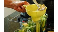 In a Pickle--fermented or quick process pickles.