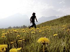 Why Walking Helps Us Think - The New Yorker