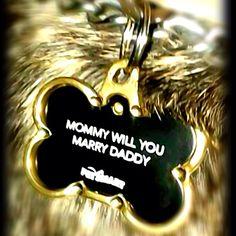 proposal ideas, dog tags, future husband, engagement proposals, puppy proposal, puppy engagement, gift idea, engagement puppy, marriage proposals