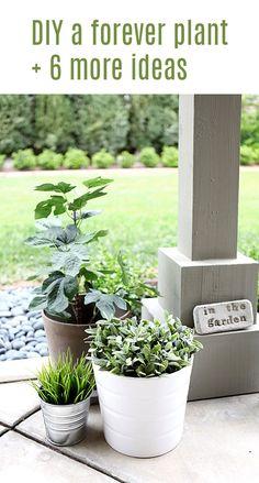 #DIY a forever plant + 6 more ideas.