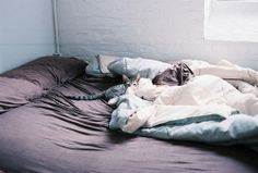 Look carefully and you'll find a little kitten lurking in the #bedding!