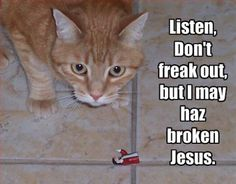 Cat and Jesus.