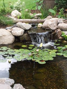 "Minnesota.  Small backyard pond with a waterfall and a bog (to help keep it clean).  Inspired Design Landscapes Inc.  ""from inspiration to installation!"" www.idl-inc.com"
