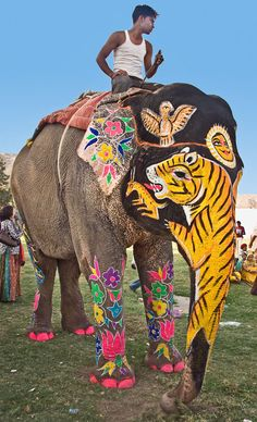 Elephant Festival, One of The Brightest and Most Colorful Festivals in India..
