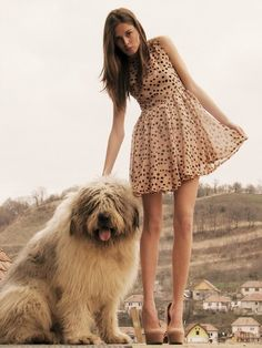 the dress and the dog!