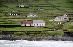 Irish national houses