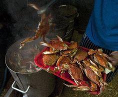 Maryland: crab boil