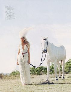 white horse and white feather head dress