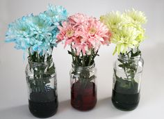 Dream a Little Bigger - Dream a Little Bigger Craft Blog - Dyeing Flowers with Food ColoringTutorial