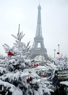 Dreaming of #Christmas in #Paris...