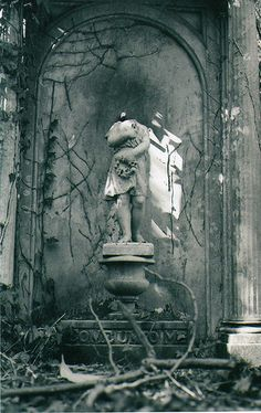 Old graveyards (Highgate Cemetery / London)