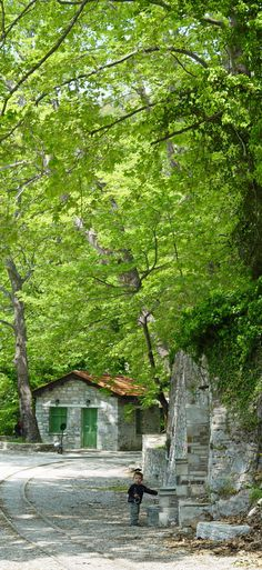 Pelion mountain, #Greece, #nature