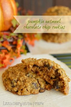 Pumpkin chocolate chip cookies have always been a favorite. I love how moist and soft they are. Adding oatmeal makes them even better!  Little Dairy on the Prairie