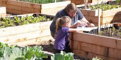Become A Food Bank Gardener To Help Those In Need