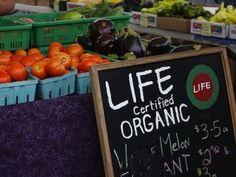 mother, diet weightloss, organ short, farm life, sell organ