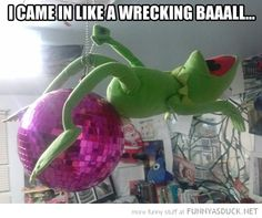 Kermit Cyrus. this cracked me up!