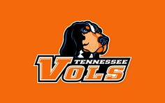 tennessee vols - Google Search