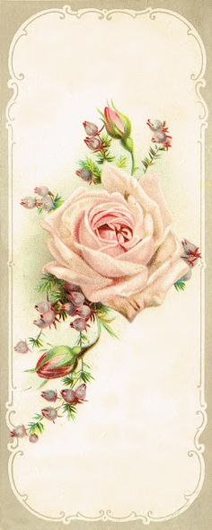 Pink rose & heather bookmark ~ the original was found tucked in an old Bible from the 1900's.