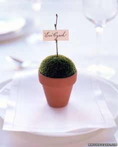 Cute potted place card.