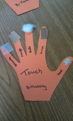 5 Senses - Touch Smooth (wax paper), rough (sand paper), soft (cotton ball), bumpy (inside of cardboard), hard (decorative stone)