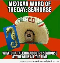 Mexican word of the day seahors, mexican problem, laugh, the police, giggl, funni, mexican word, humor, chili
