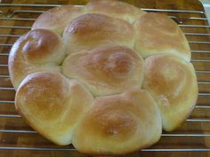 Easy Amish Dinner Rolls For Thanksgiving | Amish Recipes Oasis Newsfeatures