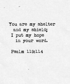 shelter, psalm 119:114, psalm 119114, psalm 119 114
