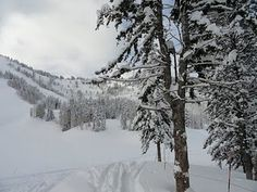 Beautiful view skiing The Canyons in Park City, Utah --We love this place!