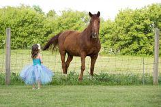 little girl, horse photography, tutu, Lisa Karr Photography, Beloit Wisconsin, Find on Facebook