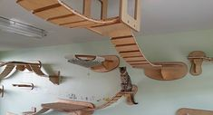Amazing German Designed Cat Climbing Furniture cats, cat furniture, pet, walkway, cat houses, kitty, playgrounds, design, heavens