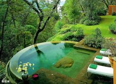 Garden view infinity pool