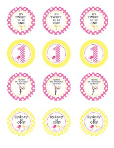 Sweet Tweet Bird Birthday Party Circles DIY Printable Personalized Cupcake Toppers Favor Tags 1st Birthday