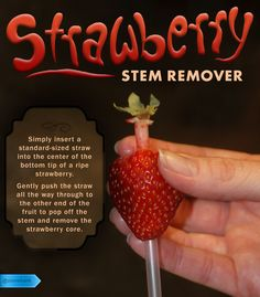 It turns out a straw is the best tool for de-stemming a strawberry. #SaveMoney #DIYHome #HouseholdTips #StemRemoval #WholeStrawberryTrick