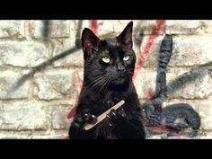 Amazing commercial.  What if cats gained opposable thumbs?
