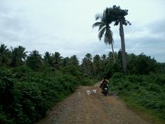 travel to far flung areas of Calauag, Quezon