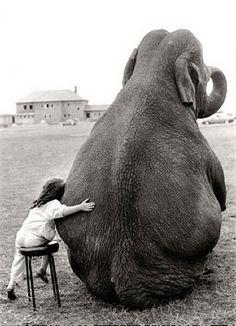 girl and elephant photo by samlovesherdog, via Flickr