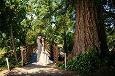 Beautiful wedding photo idea on the bridge.