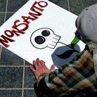 Stay Out, Monsanto: Costa Rica is Almost 100% Transgenic-Free