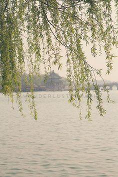 Summer Palace Beijing Photographic Print