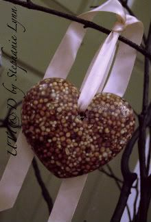 Valentine seed heart for the birds