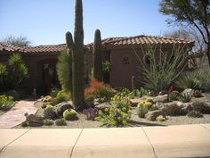Basic & Pro Landscaping Designs. You can use the ideas whether you're a DIY beginner, a professional landscaper, or a homeowner willing to spend to get that perfect landscape for your outdoors