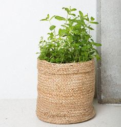 Material: juteSize: 27 x 26 cm  Product code: 102737 Whether you'll store your favorite items in them, use them as a plant bag or simply display them as a decorative beauty, our Jute & Cotton baskets are exactly where Urban meets Culture.
