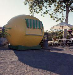 When life gives you lemons: Make lemonade in you lemonade trailer.  LOVE
