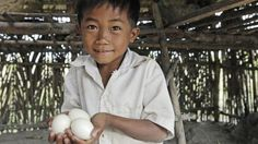 Heifer International's Gifts That Give Back