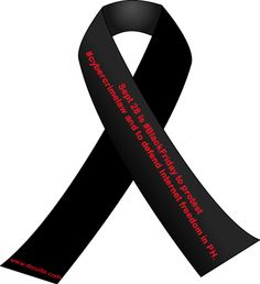 Sept 28 is #BlackFriday to protest #cybercrimelaw and to defend Internet freedom in PH. Wear black, put black ribbons or badge across the web.